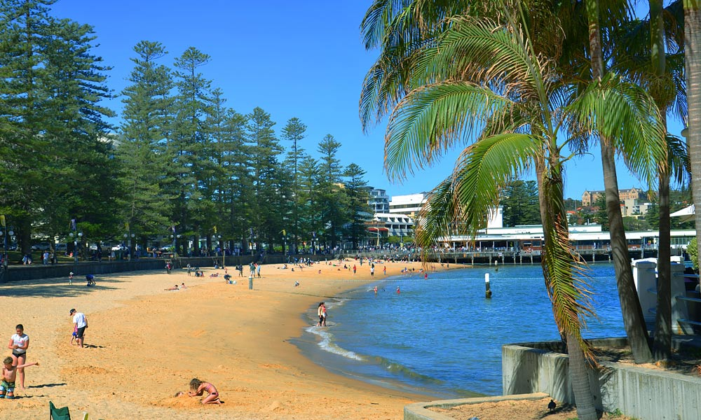 Manly & Northern Beaches